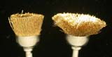 Soft-bristle Dremel Brass Brush